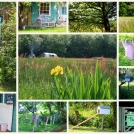 search-results-for-2013-the-meadows-no2